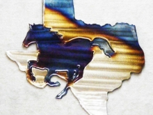 texas,mustang,horse,equine,running,state,art