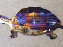 turtle,shell,wildlife,slow,box,gopher,snapping,art